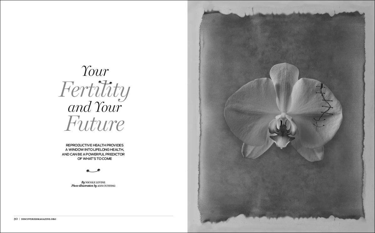 discoveries-magazine-1